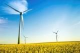 Nachhaltigkeit-300x200